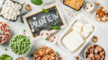 Plant-Based Proteins and Diabetes Risk